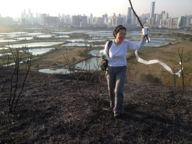 Shenzhen with only a billion megawatts
