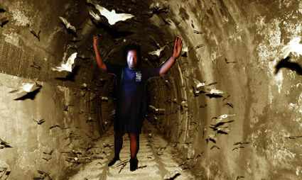 bat-tunnel copy